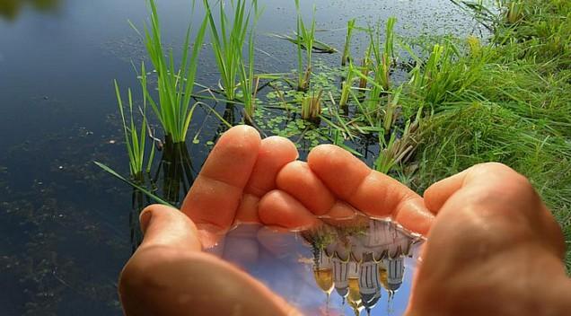Чистый человек и экология. Есть ли связь?